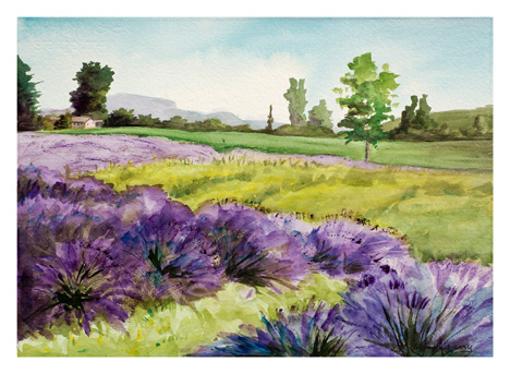 Lavender Blue by Molly Perry