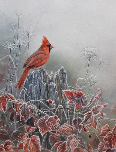 Susan Bourdet - Cardinal