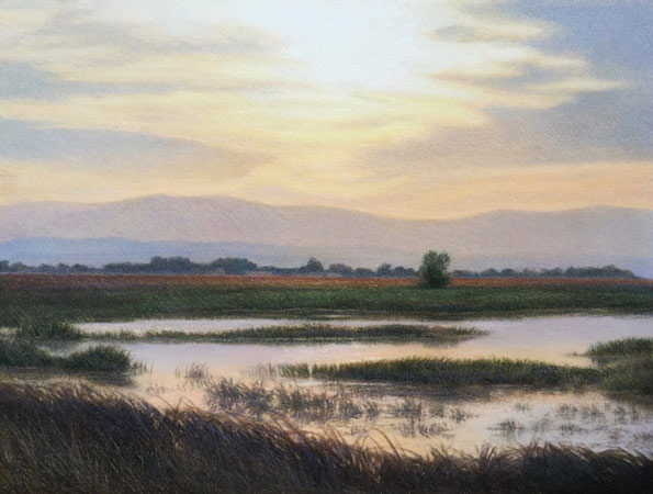 """Sacramento National Wildlife Refuge"" by Rachel Oehler"