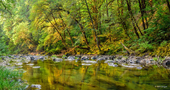 "South Santiam River"" by Bill Origer"